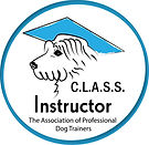 C.L.A.S.S. Instructor Badge