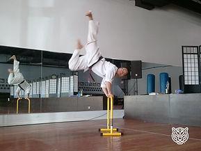 Master.Rhee (1).jpg