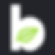 B-icon.png