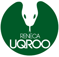 LOGO IN (2).png