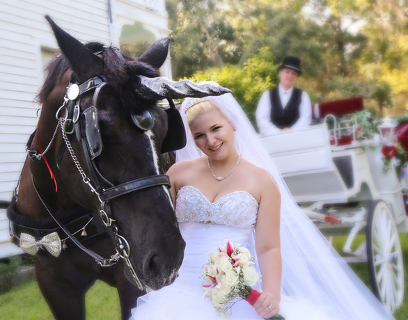IMG-Wedding367.jpg