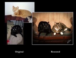 Restoration0115.jpg