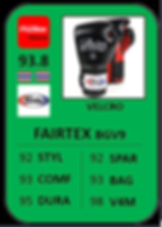 3 - FAIRTEX BGV9.png