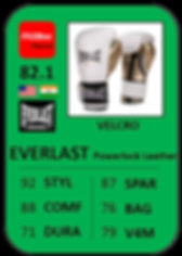 6 - EVERLAST Powerlock Leather.png