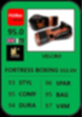 FORTRESS BOXING SS2.0V.png