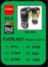 6 - EVERLAST Powerlock PU.png