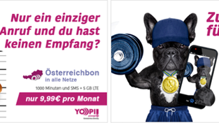 Facebook dogs campaign (Yooopi!)