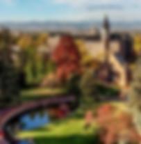 University of Denver Ad Image.jpg