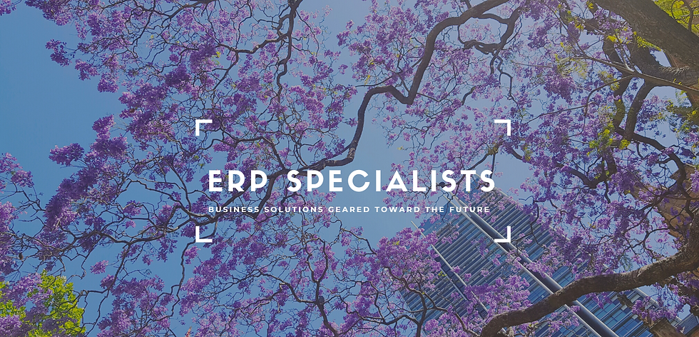 Website pic ERP specialists.png