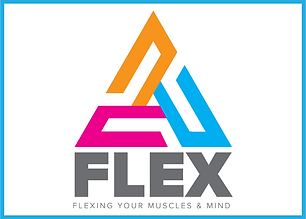 Flex (website)-01.png