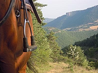 Souca cheval