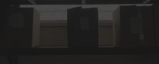 Shelves dark 2.png