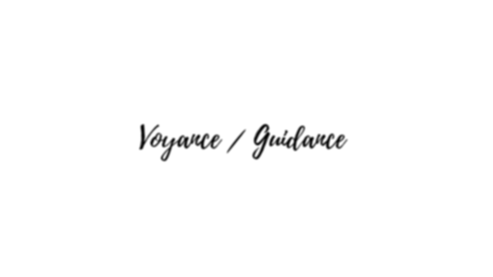 voyance guidance.png