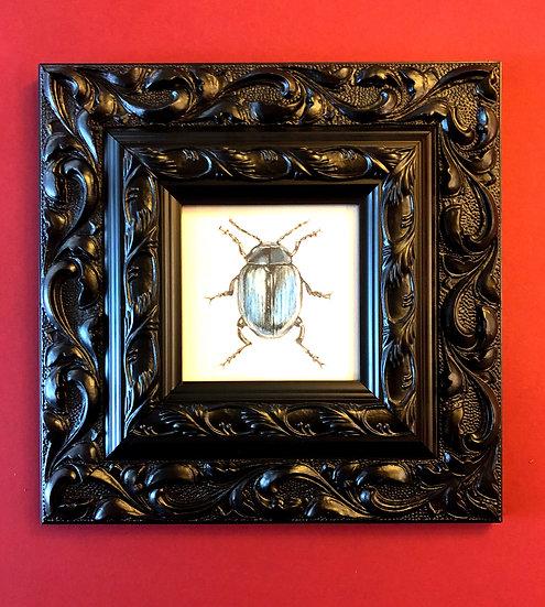 Original Beatle watercolour in ornate black frame