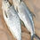 Thumbnail: 3023 Milkfish W/R 800 Up