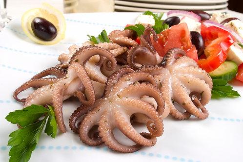 4025D Baby Octopus