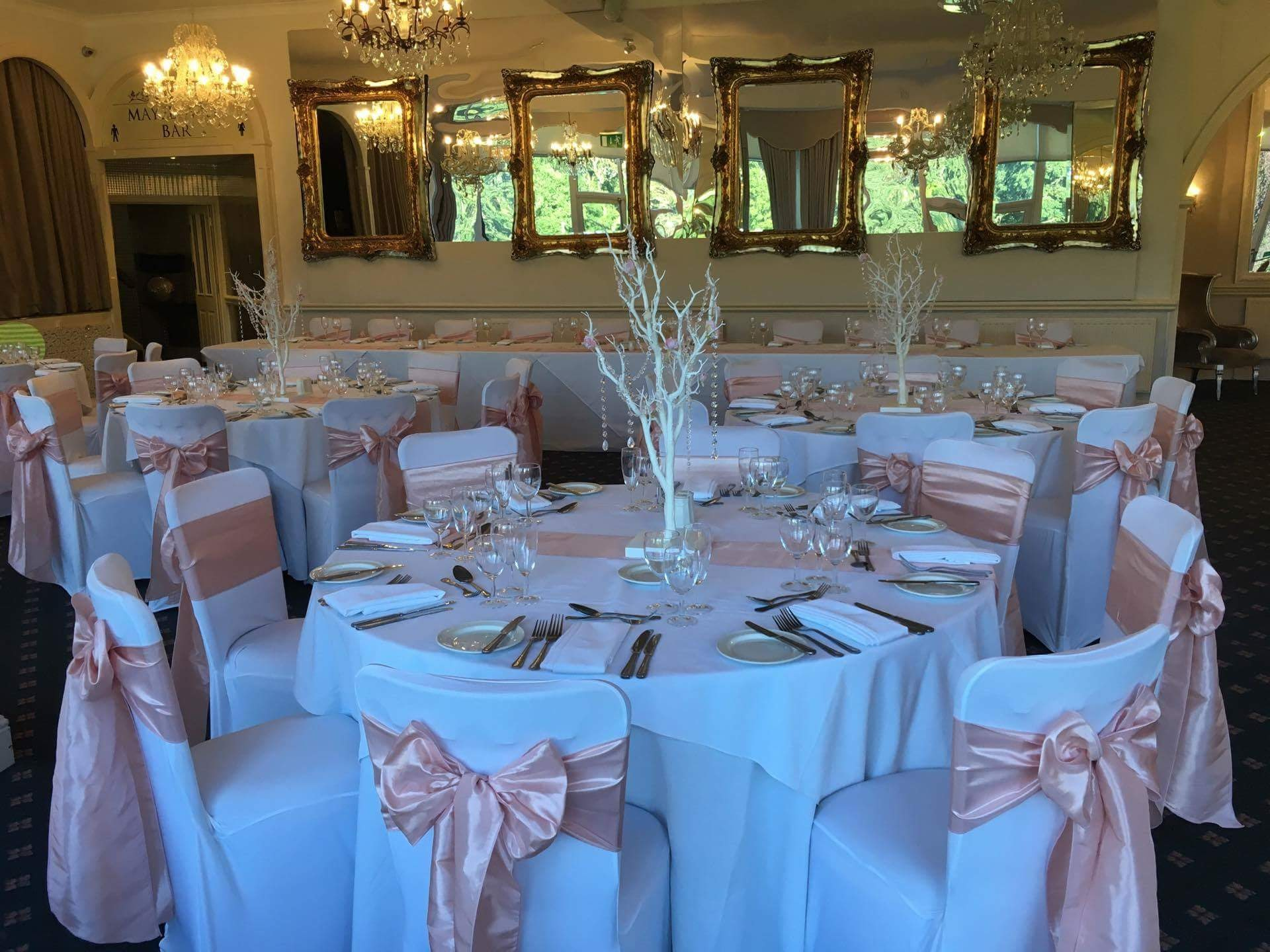 Blush Pink satin sashes