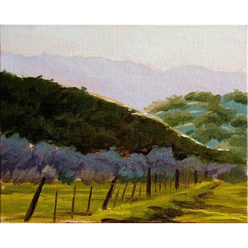 """""""Suisun Valley Hills"""" Print"""
