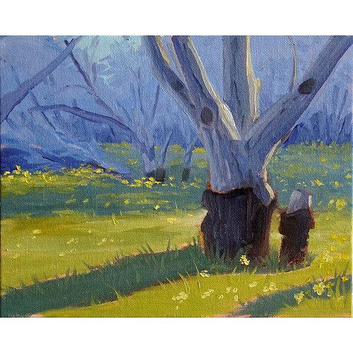 """""""Walnut Orchard"""" Print"""