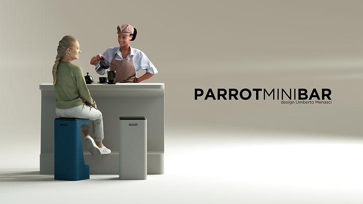 4 PARROT MINI BR.jpg