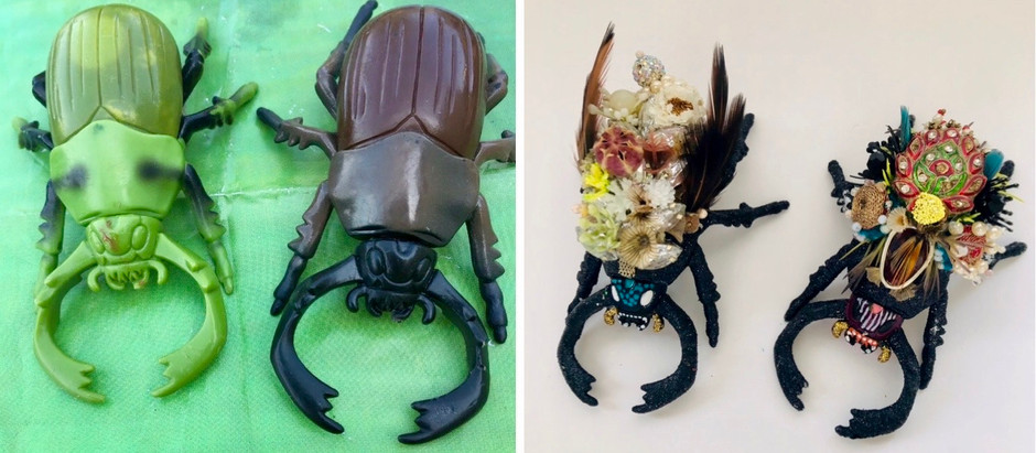 Beetle Blog