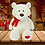 Thumbnail: Snowball the Bear - The Bear that Wears its Heart on its Paw
