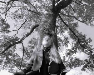 dinah tree 2 bw.jpg