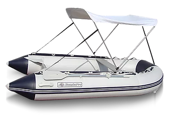 Skipper-with-canopy.png
