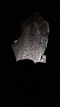 Mediterranean Ecosystems - night visit to Rock Art site of Penascosa