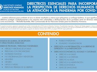 Directrices para incorporar la perspectiva de derechos humanos en la atención a la pandemia