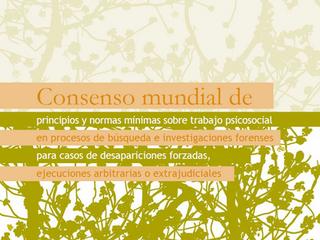 Consenso mundial de principios y normas mínimas sobre trabajo psicosocial en casos de desaparición