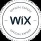 Wix Expert jgcomunica.png