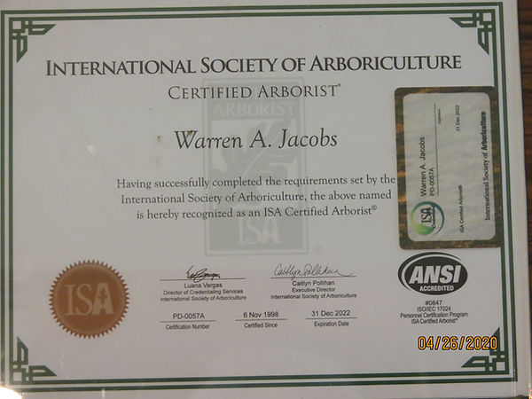 certified arborist.JPG