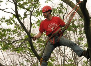Penn-Del ISA Arbor Day of Service