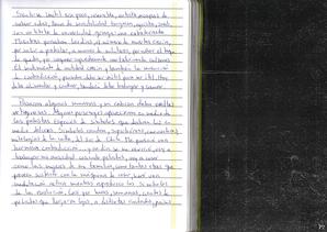 manuscript P2