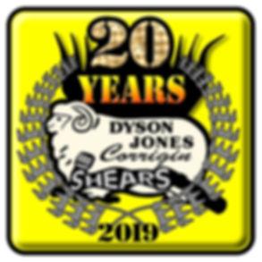 20 year dyson jones.jpg