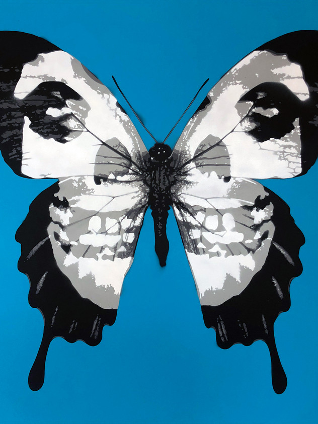 "40 ""X 40"" DESAJÁVEIS SKULLERFLY BLUE"