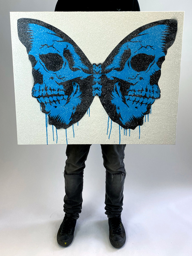 "30 ""X 24"" SKULLERFLY DIAMOND DUST BLUE"