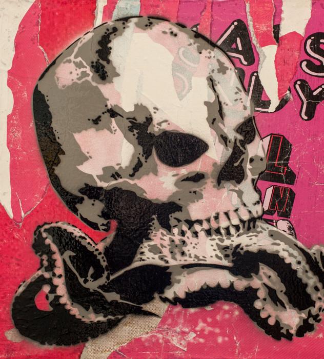 schädelapus-pink.jpg