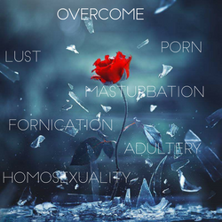 adultery, homosexuality, fornication