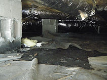 Carolina Crawlspace Solutions
