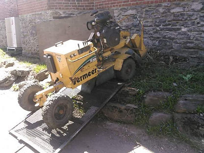 removal of a stump