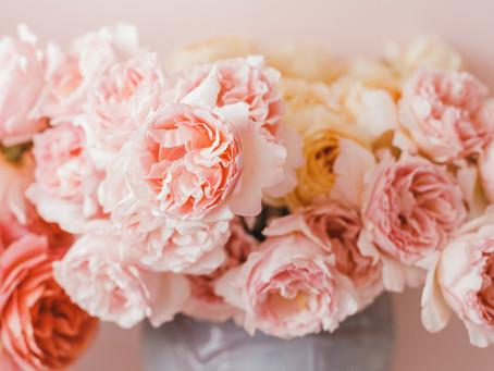 ¿Cómo cuidar nuestras flores y bouquets?