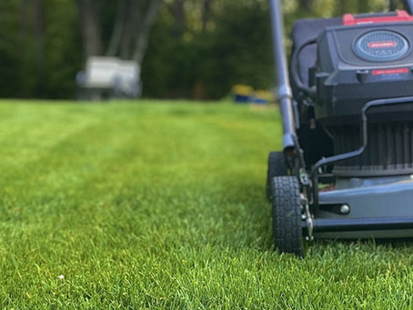 Six Ways to Prep Your Yard for Electric Landscaping