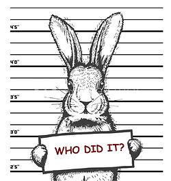 RabbitMugshot.jpg