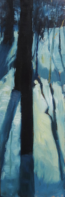 Forest Shadows, 24x8x1.5 inches