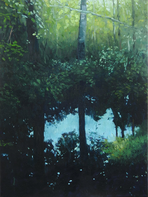 Vernal Reflections, 16x12 inches