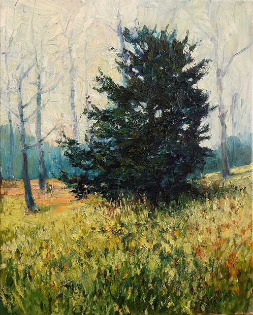 Winter Evergreen (Cedar), 20x16 inches