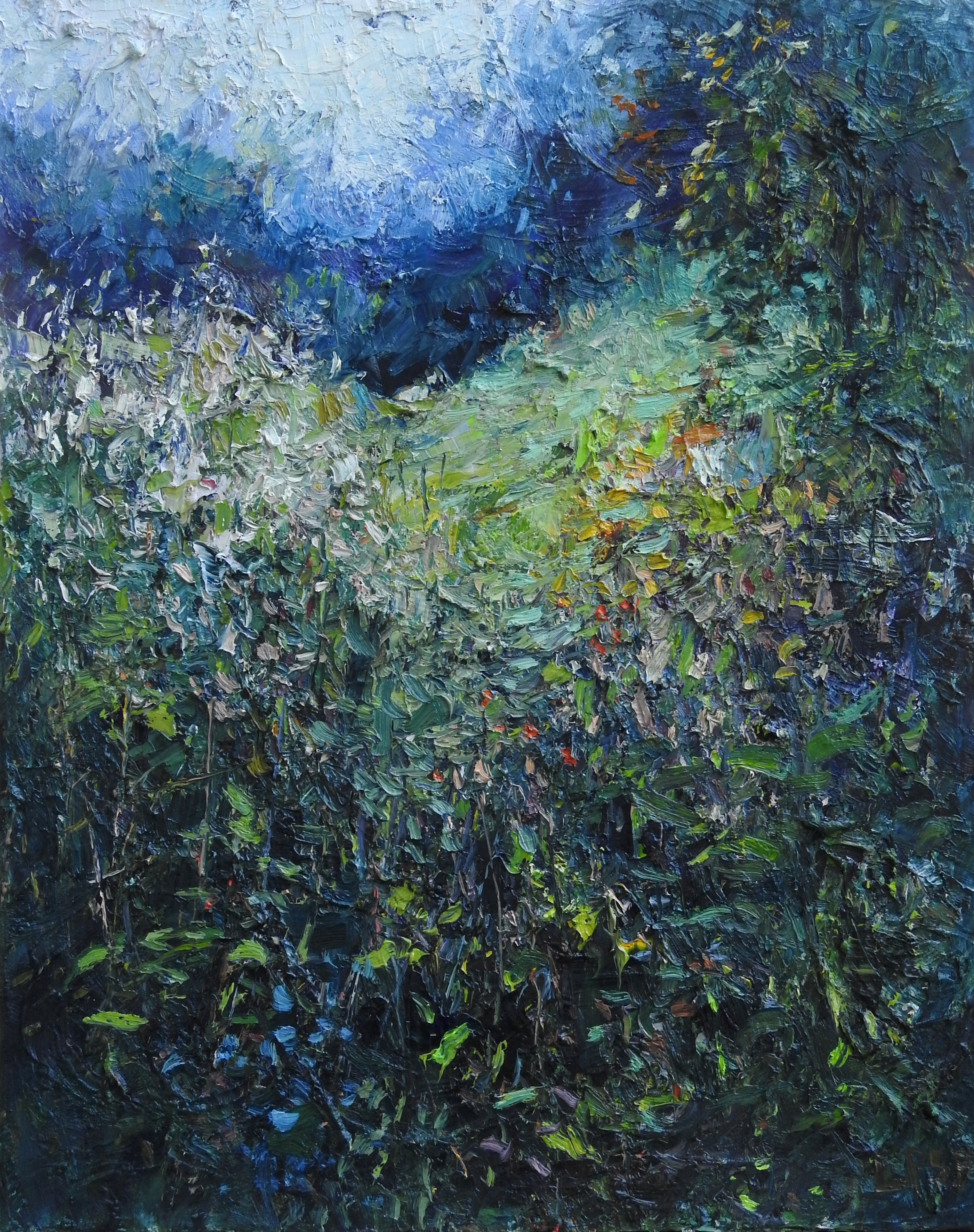 Meadow in the Woods