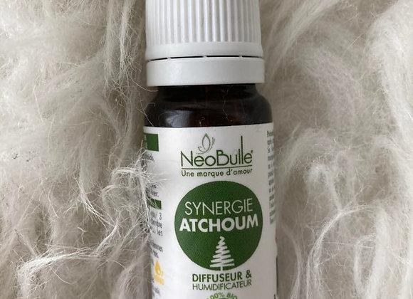 Synergie Atchoum